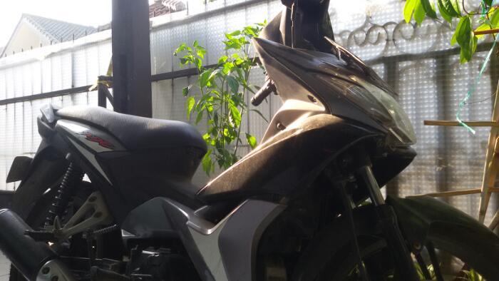 motor bekas