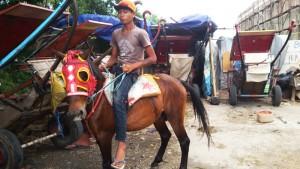 Pangkalan delman dan kuda sewaan di Terusan Buahbatu Bandung. | Foto serbabandung.com #serbabandung