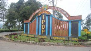 PTPN VIII