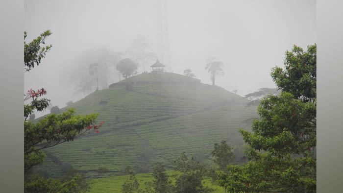 gunung nini