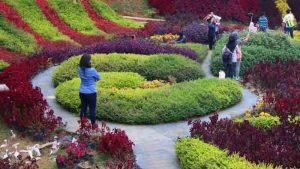 barusen hills taman bunga di bandung