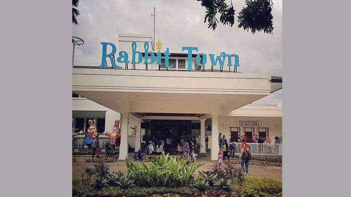 rabbit town
